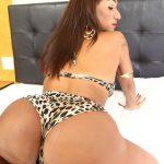 Luana Aquylla Brazilian Transsexuals