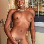 Malibu Barbie Black TGirls