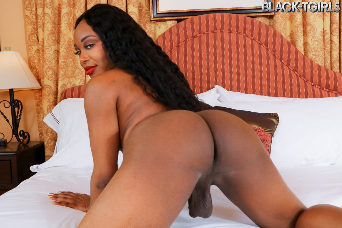 Lauren Denise Black TGirls