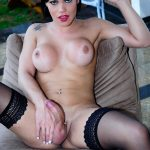 Danielly Collucci Brazilian Transsexuals